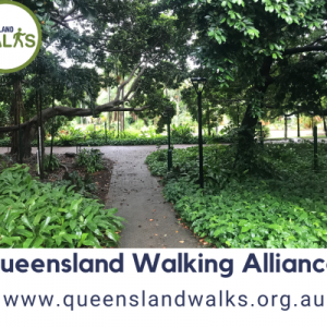 Queensland Walking Allianceresize