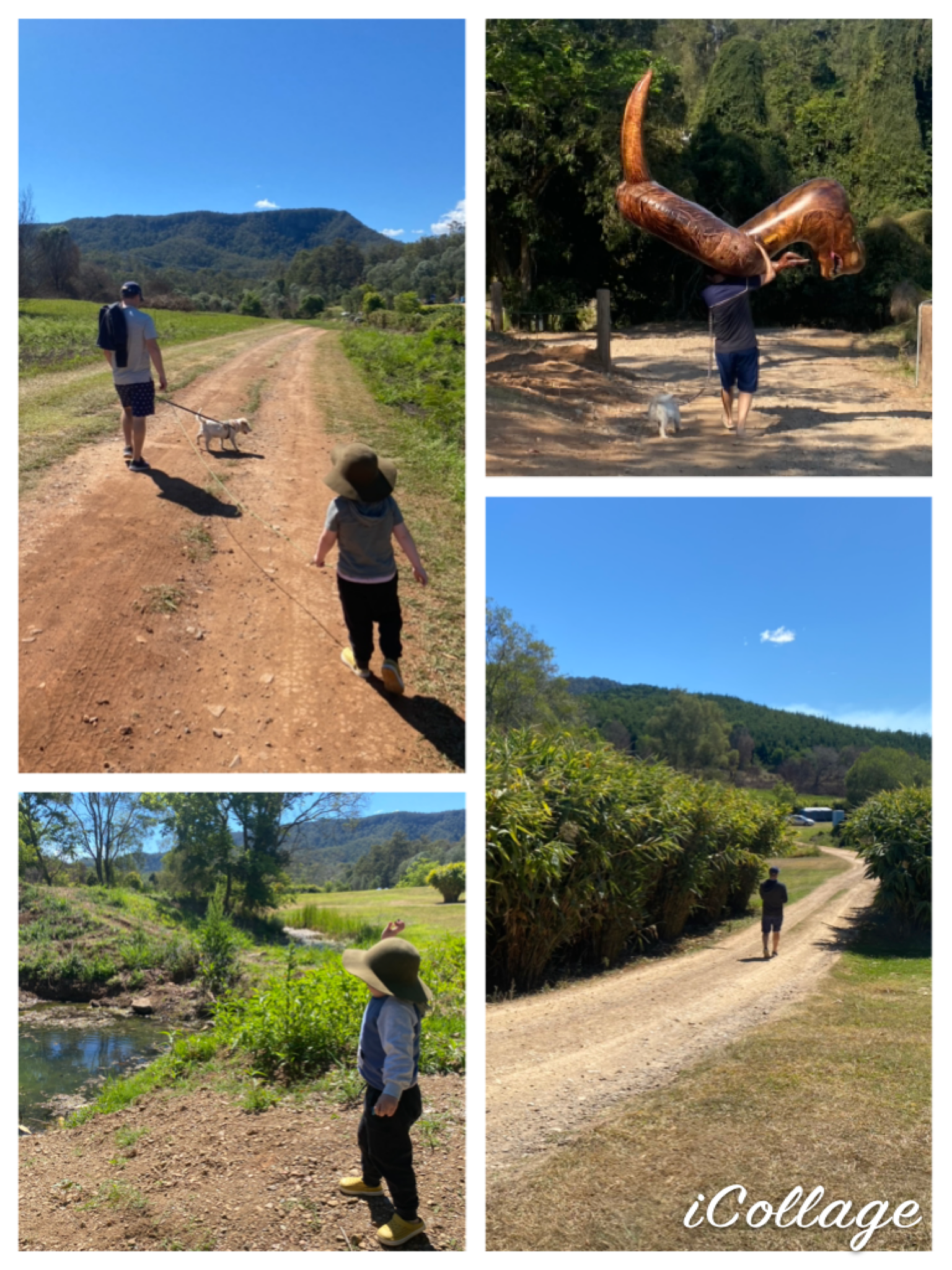our walk to the waterhole at bluff creek
